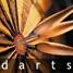 Icoon Darts