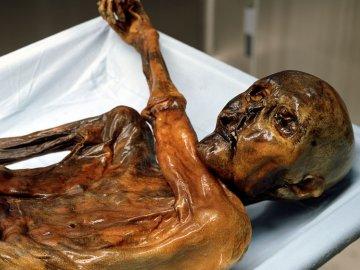 IJsman Ötzi, verantwoordelijk voor tenminste vijf doden?