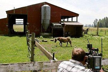 Een stal van de boerderij in Enumclaw