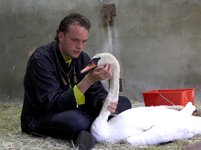 Martin Hof (Dierenbescherming) met de vaderzwaan
