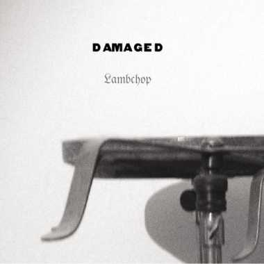 Lambchop - Damaged