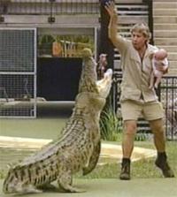 De Crocodile Hunter in actie